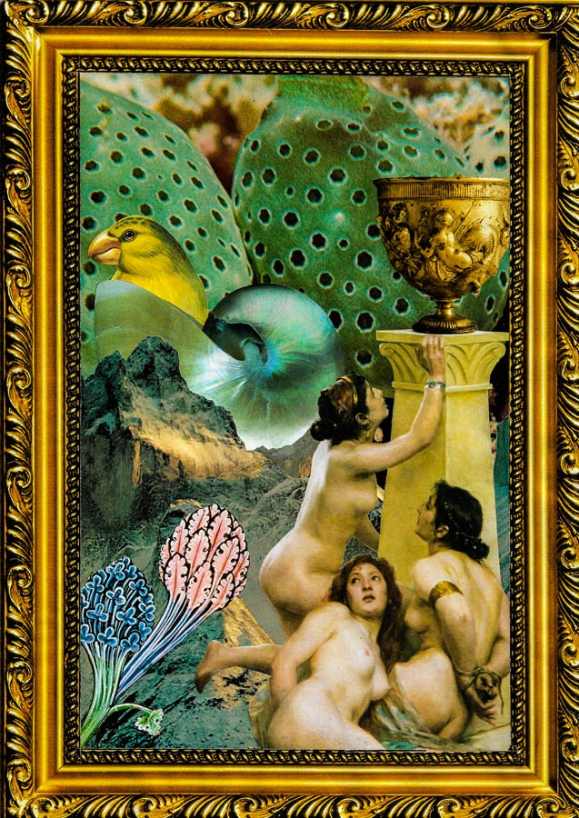 Elixir-de-eterna-juventud-Collage-2018